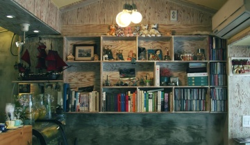 shelf, bookcase, room, furniture, interior, house