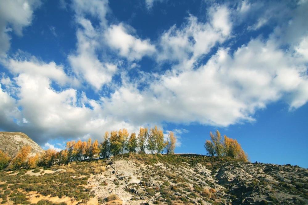 Collina, cielo, natura, paesaggio, estate, campo, orizzonte, erba