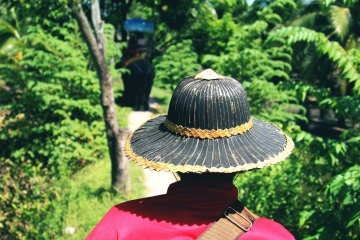 person, hat, Asia, fashion, nature, wood, summer, leaf