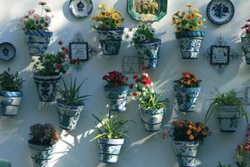 Zátiší, exteriér, květin, domů, dekorace, dům, keramika, váza
