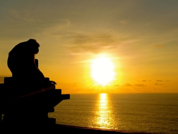 sunset, dawn, sun, backlit, silhouette, beach, sea, water, dusk