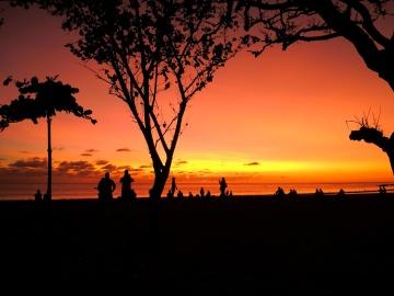 zachód słońca, sylwetka, Świt, podświetlany, słońca, Zmierzch, drzewo, krajobraz