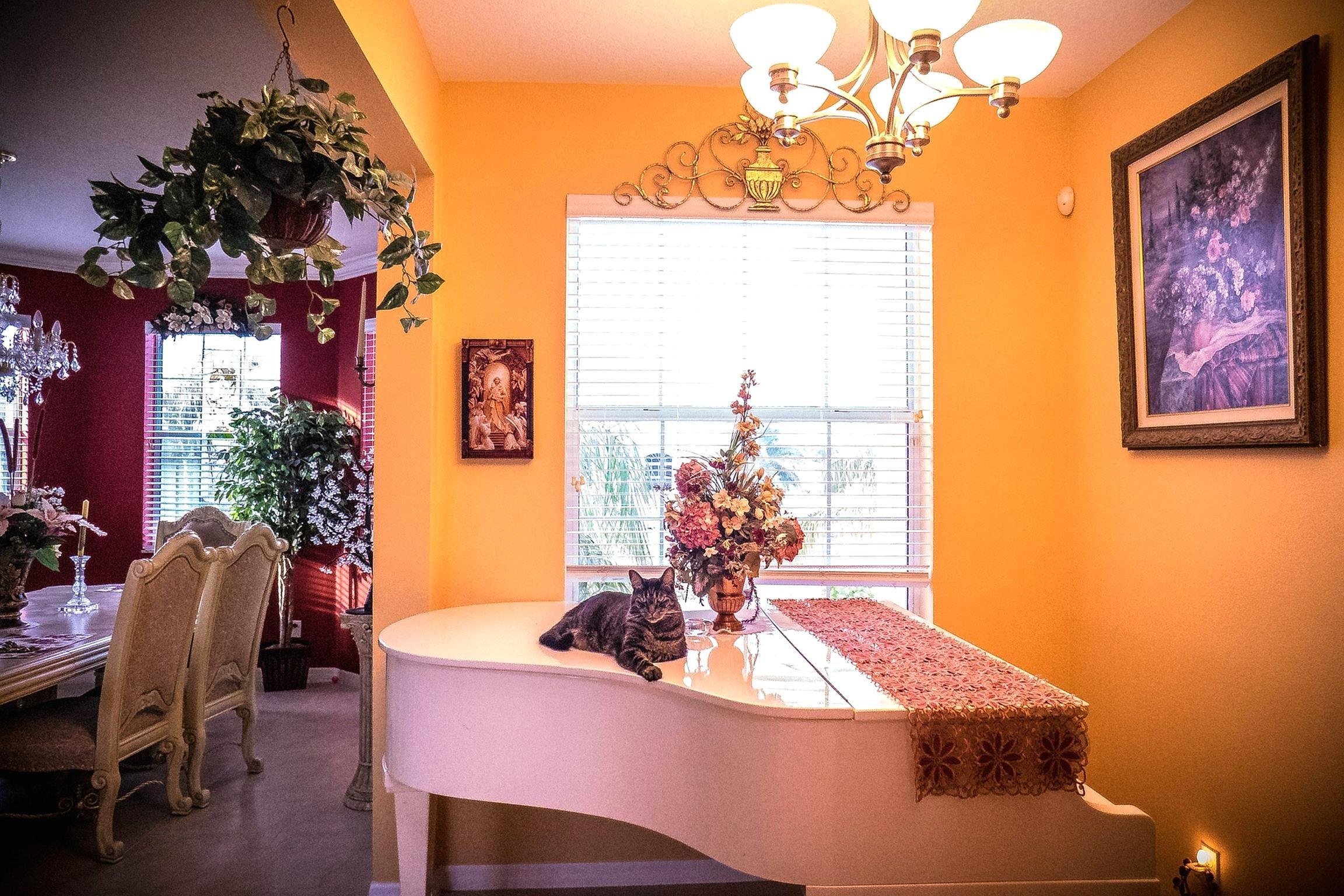 Perfect Room, Furniture, Window, Desk, House, Interior, Piano