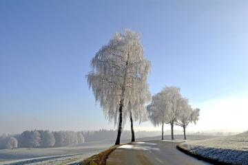 φύση, ουρανό, τοπίο, δρόμος, πάγο, τοπίο, μπλε του ουρανού, δέντρο