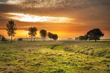 Sonnenuntergang, natur, landschaft, dämmerung, sonne, baum, gras, feld, himmel