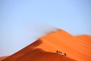 sand dune, desert, sand, wind, tourism, travel