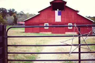 fence, wooden, barn, gate, rustic, agriculture, architecture, rural