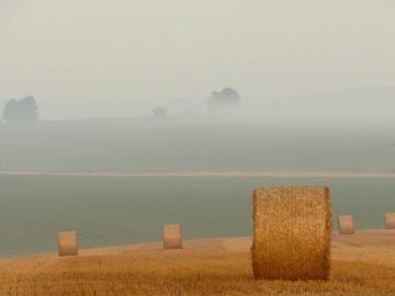 dusk, sky, mist, landscape, agriculture, field