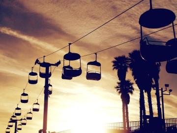 soumraku, drát, palmový strom, západ slunce, městské, obloha, silueta