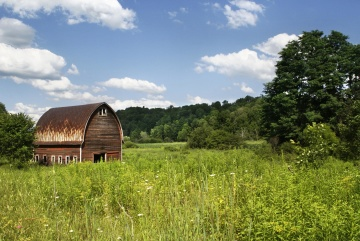 rural, barn, agriculture, wood, countryside, structure
