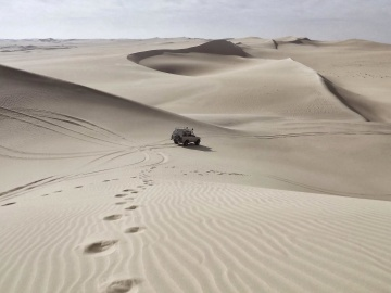 sand, desert, sand dune, footprint, wasteland, car, tourism, adventure, landscape