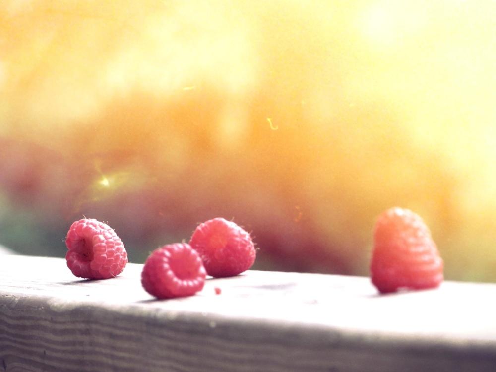 thực phẩm ngọt, trái cây, ánh nắng mặt trời, thiên nhiên berry, ngon,