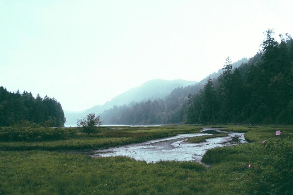 krajina, voda, řeka, hory, strom, příroda, hill, tráva, národní park