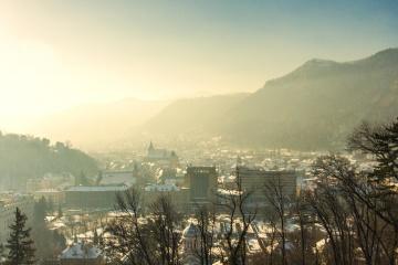 Niebla, árbol, niebla, céntrico, urbano, metrópoli, montaña, paisaje, cielo