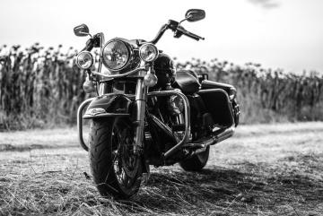 Roue, véhicule, moto, phare, luxe, monochrome