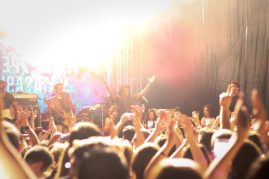 music, concert, performance, musician, people, audience, crowd
