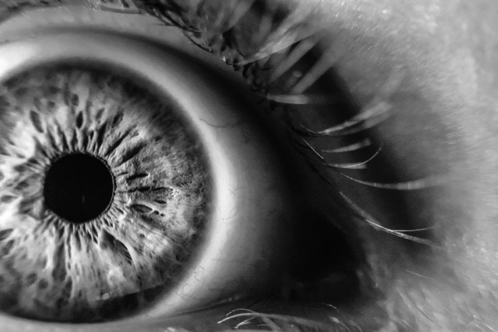 đơn sắc, mắt, vĩ mô, chi tiết, da