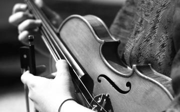 Musicista, strumento, classico, violino, legno, musica, suono, mano, monocromatico, seppia