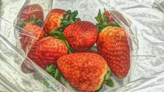 art, photomontage, painting, food, fruit, sweet, strawberry, dessert