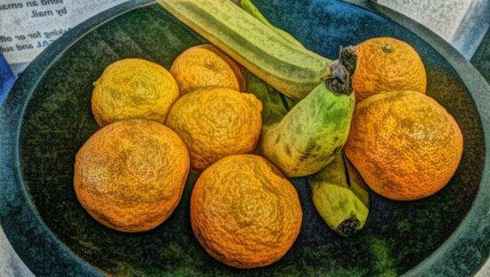 art, photomontage, painting, food, fruit, banana, bowl, orange fruit