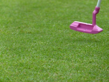 golf, grass, lawn, putt, golfer, garden, object, stick