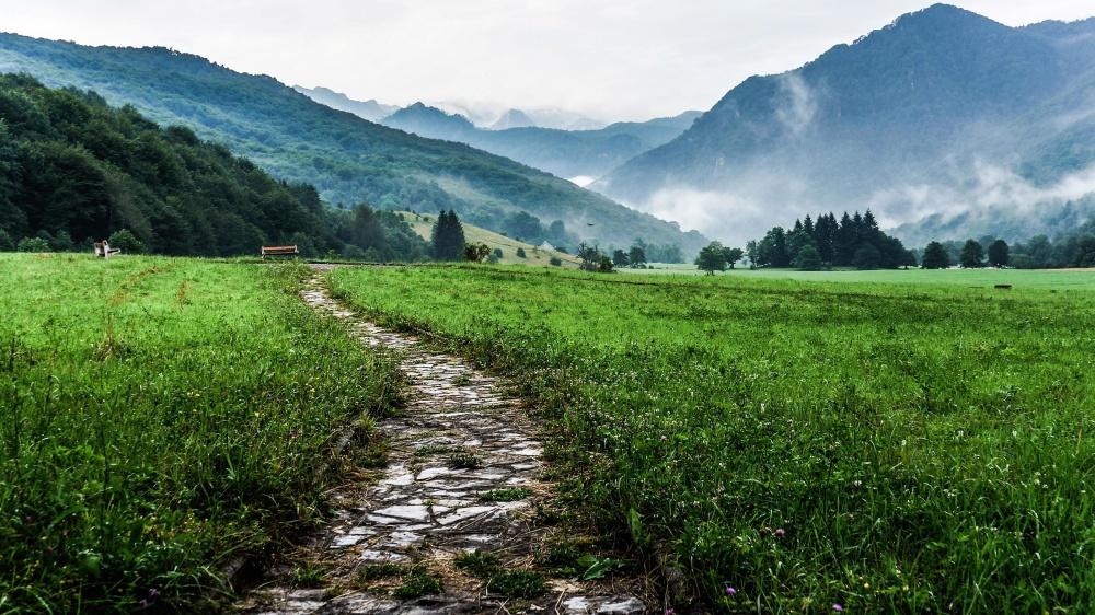 Landschaft, Natur, Gras, Feld, Himmel, Wiese, ländlich, Sommer