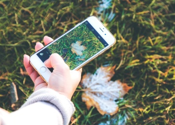 hand, mobile phone, finger, grass, nature, snapshot, autumn