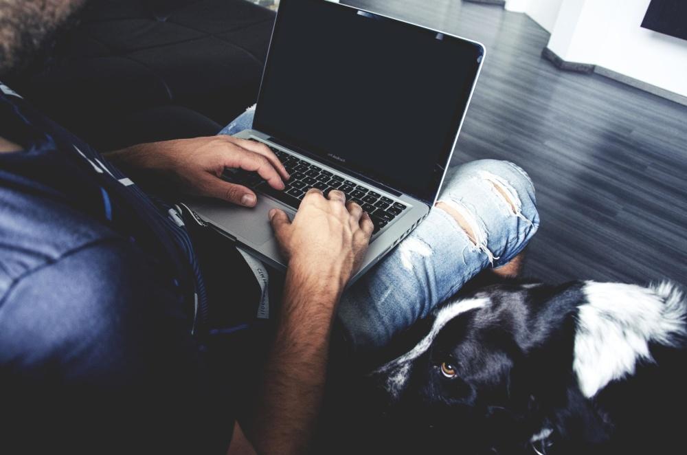Hombre, interior, perro, ordenador portátil, trabajo, tecnología