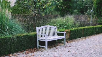 exterior, park, garden, bench, wood, leaf, nature, chair
