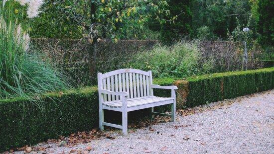 exterior, park, garden, bench, wood, leaf, nature, chair