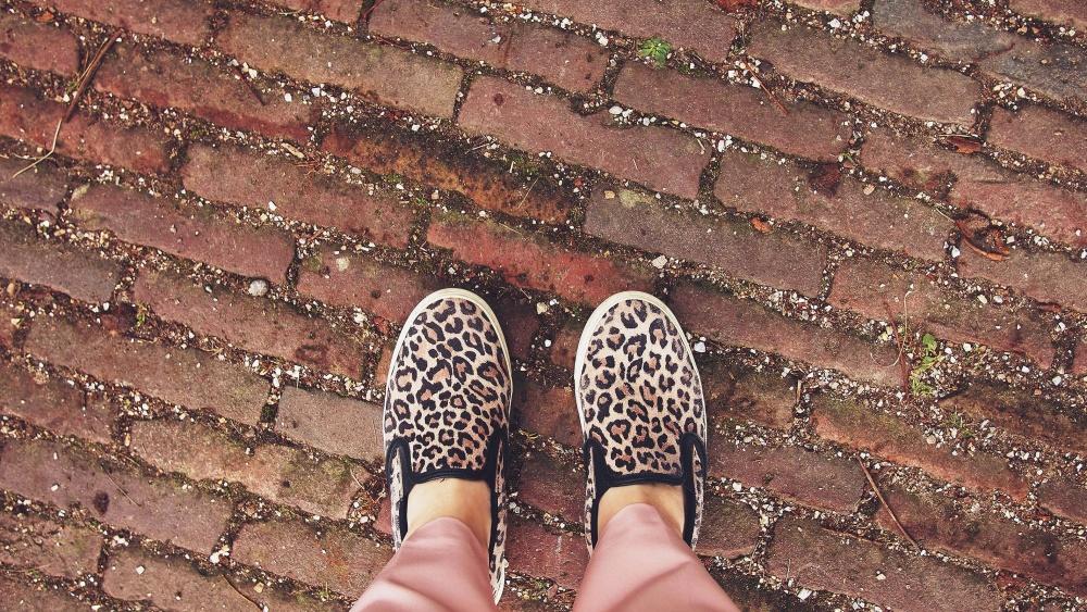 스 니 커 즈, 발, 신발, 도시, 구두, 패션