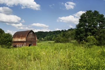 rural, agriculture, wood, barn, structure, grass, meadow, lawn