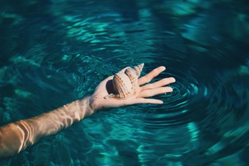 underwater, water, hand, finger, summer, seashell