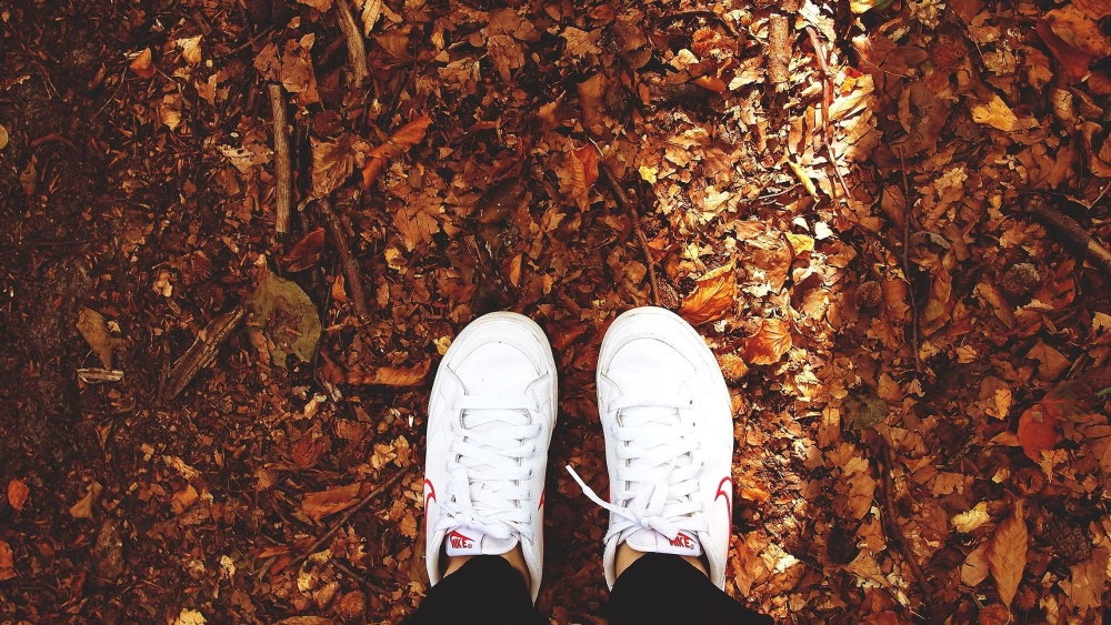 sneakers, foot, footwear, autumn, ground, dry, leaves