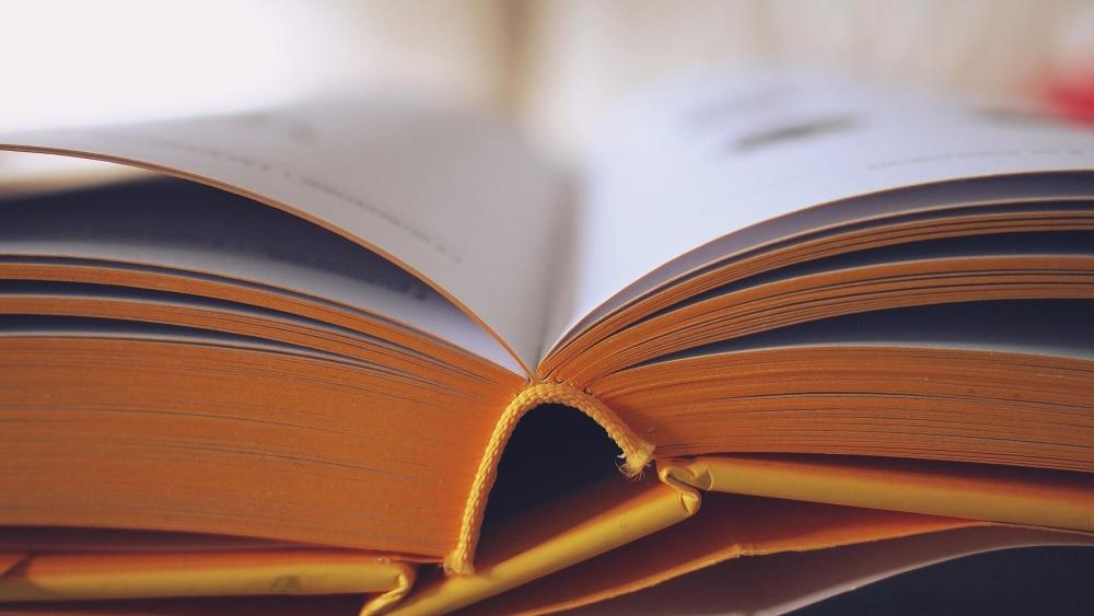 βιβλίο, μυθιστόρημα, σελίδα, λογοτεχνία, βιβλιοθήκης, γνώση, κείμενο, Σοφία