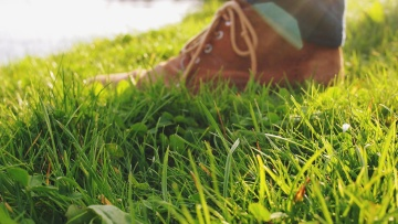 show, fashion, shoelace, grass, lawn, field, ground, summer