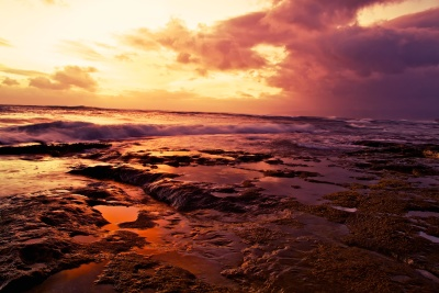 sunset, dawn, water, dusk, beach, sea, sun, landscape, sky, sunrise