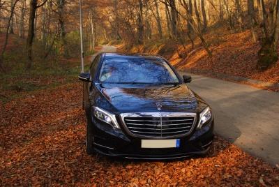 auto, veicolo, autunno, bosco, veicolo, auto, trasporto, automobile