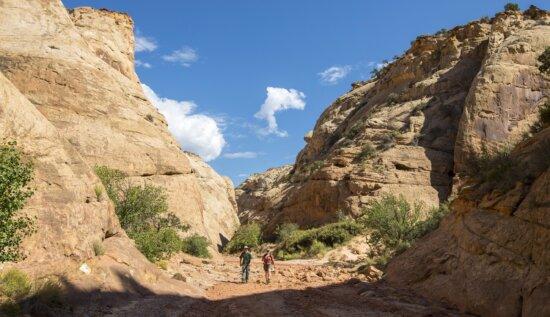 paysage, nature, ciel, montagne, canyon, vallée, désert