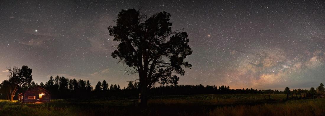 Baum, Landschaft, Himmel, dawn