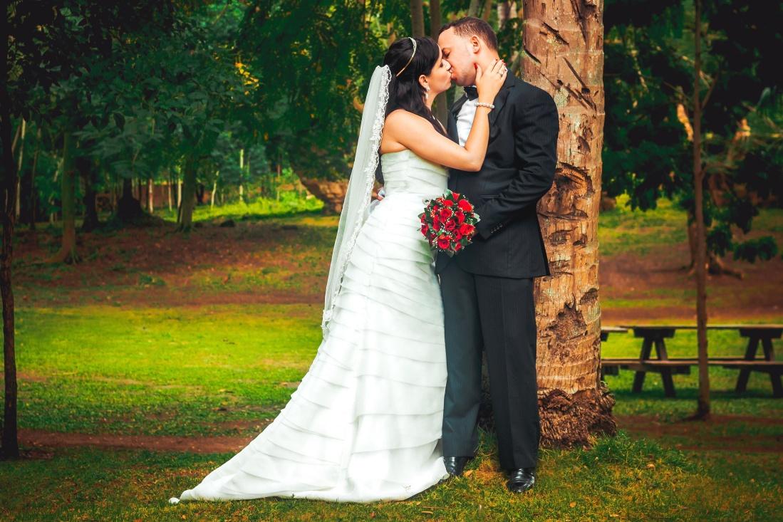 bride, dress, woman, groom, engagement, marriage, portrait, veil, happiness