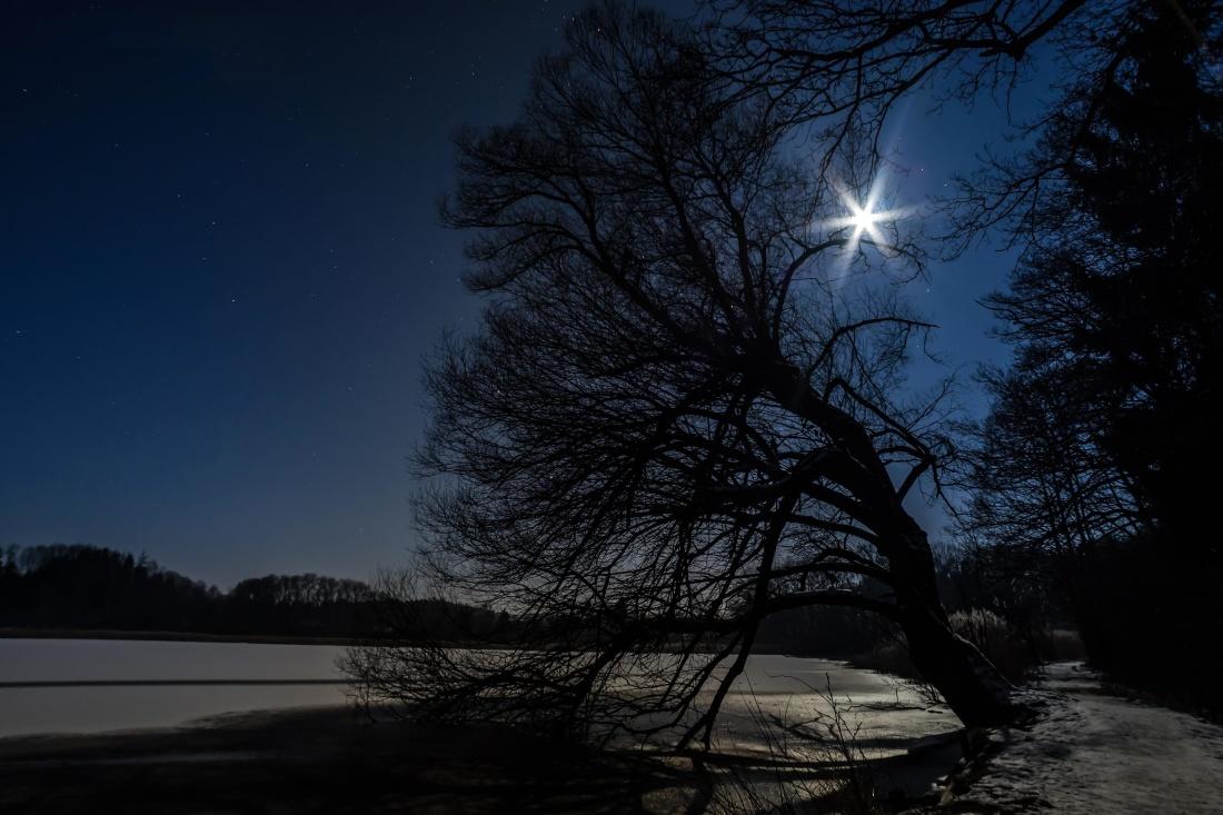 árbol, amanecer, paisaje, atardecer, lago, Luna, agua, invierno, naturaleza