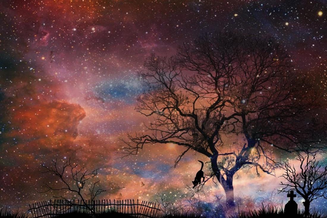 kveld, Fotomontasje, mystikk, fantasy, silhuett, landskap