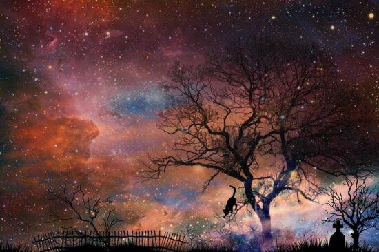 night, photomontage, mystery, fantasy, silhouette, landscape
