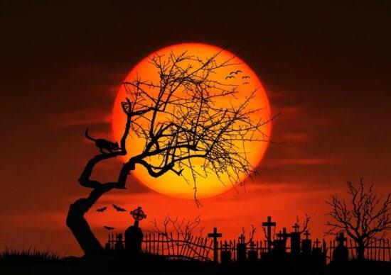 photomontage, sunset, silhouette, dawn, sun, dusk, moon, star, sunrise