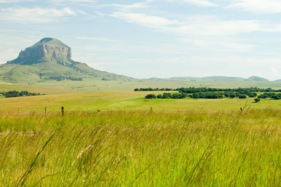 landscape, nature, field, grass, grassland, land, meadow, countryside