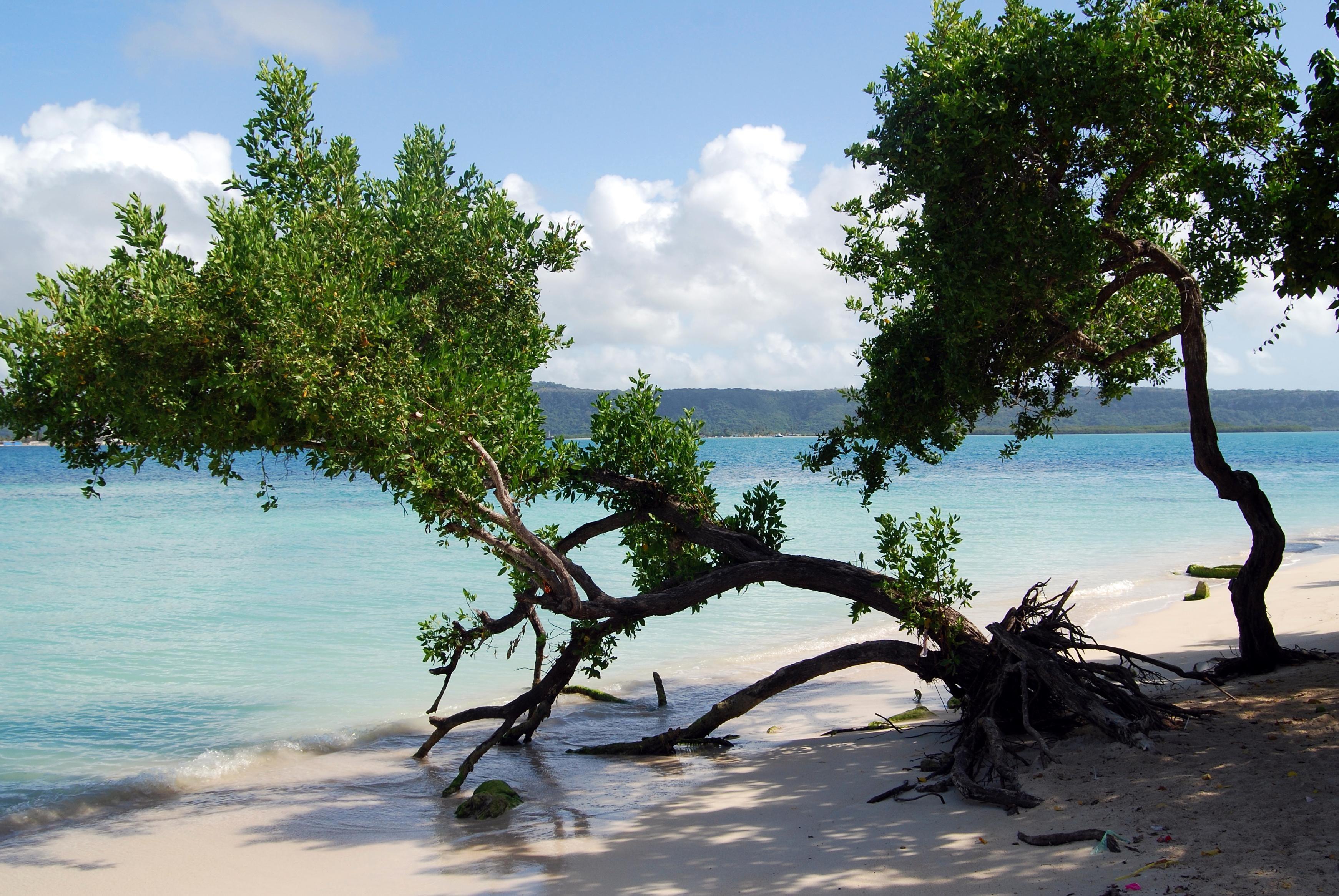 660 Koleksi gambar pemandangan pantai alam Terbaru