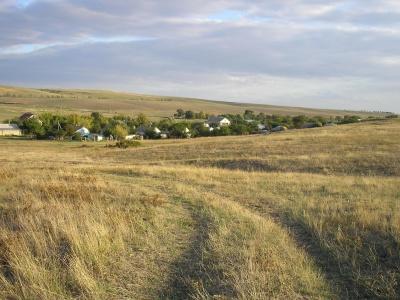 landscape, agriculture, grassland, field, daylight, farm, land, grass