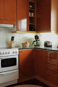 stove, shelf, kitchenware, refrigerator, oven, furniture, room, contemporary