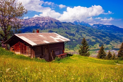 wood, barn, house, landscape, rural, nature, grass, sky, cabin
